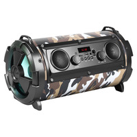Avizar Enceinte Bluetooth SoundTube Karaoke Stéréo LED 8H REBELTEC - Vert