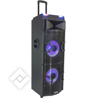 Ibiza ENCEINTE ACTIVE 2 X 12??/30CM -1000W AVEC MEDIA PLAYER DJ, ANIMATION A LED, USB, BLUETOOTH (STANDUP-PRODJ)