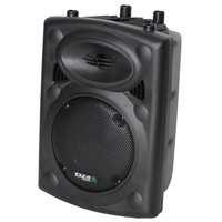 Ibiza ACTIEVE SPEAKERBOX 8inch/20CM 300W MET USB-MP3 & BLUETOOTH  (SLK8A-BT)