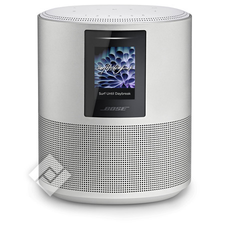 BOSE HOME SPEAKER 500 SILVER